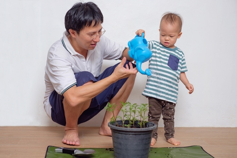 father and son watering plants, HVAC Ways to Go Green in Your Home
