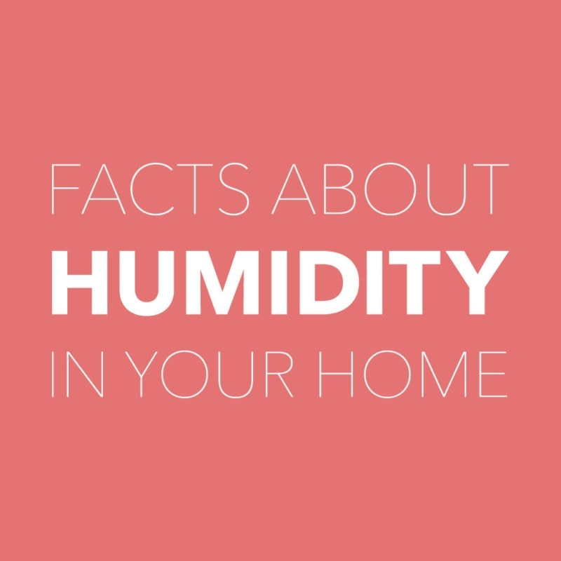 facts about humidity